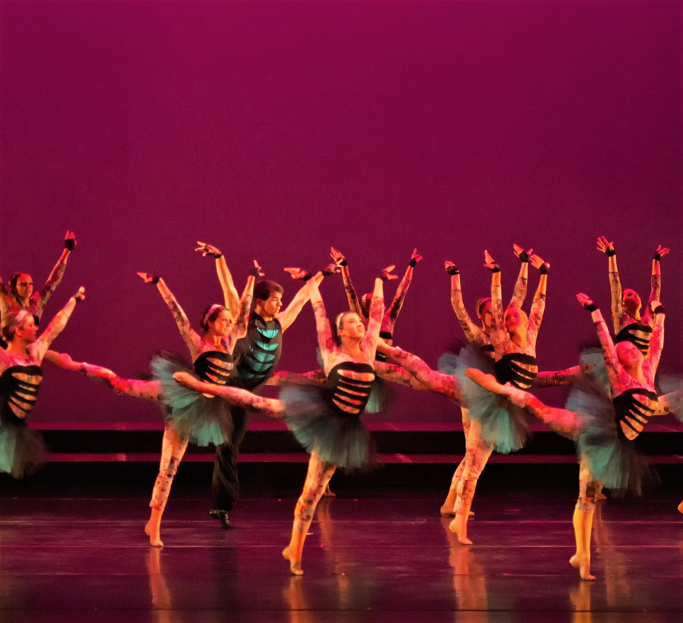 Christine s center stage dance studio home - Click This Amazon Link Above To Support Adc To Continue To Provide The Joy Of Dance For The Community You Shop And Adc Earns Thank You For Your Support